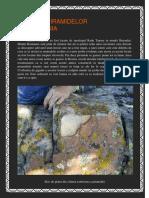 ZIDURILE-PIRAMIDELOR-DIN-ROMANIA.pdf