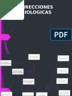 Direccion Biologica