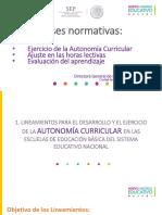 2. Bases Normativas-elisa Bonilla