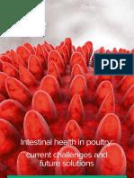 Delacon_Dossier_7-EN_Intestinal-health-in-poultry.pdf