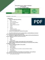 ESPECIALIDAD RA 40.pdf