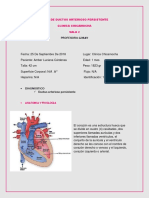 Ciere de Ductos Arterioso Persistente