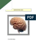 Neuroanatomia-Clinica-de-Nava-Segura.pdf
