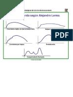 Variaciones Del Ciclo de Vida-Alejandro Lerma (1)