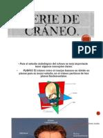 200041853-Serie-de-craneo.pptx