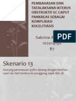 PPT PBL Sken.13