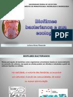 Biofilmes.pdf