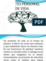 pasosparadefinirproyectodevidapersonal-110517235222-phpapp01