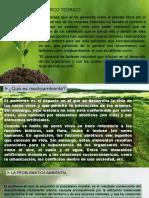Derecho Ambiental (I)