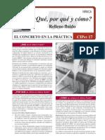 CIP_17_ES.pdf