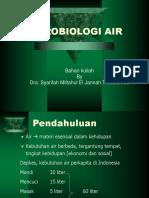 204536637-MIKROBIOLOGI-AIR-ppt.ppt
