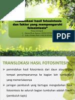 TRANSLOKASI HASIL FOTOSINTESIS