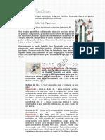 Sem a Batina.pdf
