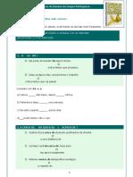CASCAS DE BANANA DA LINGUA PORTUGUESA.pdf