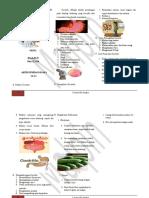 Leafleat Gastritis