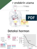 #3 Pemeriksaan Hormon dr.Syuhada #2_(1).pptx