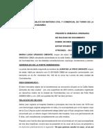 DEMANDA NULIDAD.docx