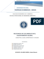 Informe Fisico Relevancia de Los Arboles Ene Lcalentamiento Global Exp. i