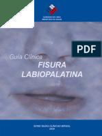 Fisura labiopalatina 2009.pdf