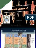 columnavertebral-140530234948-phpapp01.pdf
