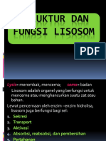 2.STRUKTUR DAN FUNGSI LISOSOM.pptx
