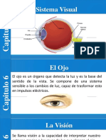 presentación del ojo