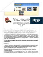 Psilocybe-Azurescens-Outdoor-Cultivation.pdf