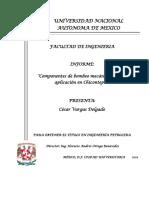 Componentes de bombeo mecanico su uso y aplicacion en Chicontepec.pdf