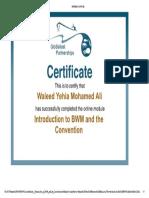GloBallast Certificate 1.pdf