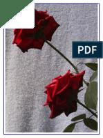 Livro de Poemas(S)[3].pdf