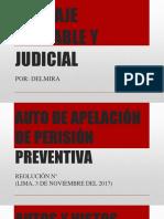 Apelación de Prisión Preventiva