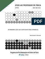 BUCUSSI2006 - Introdução ao conceito de energia.pdf