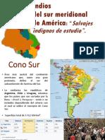 Los Indios Del Sur Meridional de America