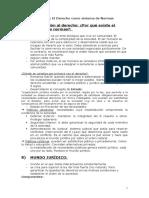 Resumen Institucion del derecho..doc