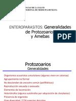 protozoarios y amebas