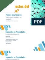 Propiedades redes neuronales (Mickey Molina).pdf