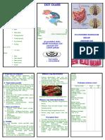 Leaflet Diare Sarmut