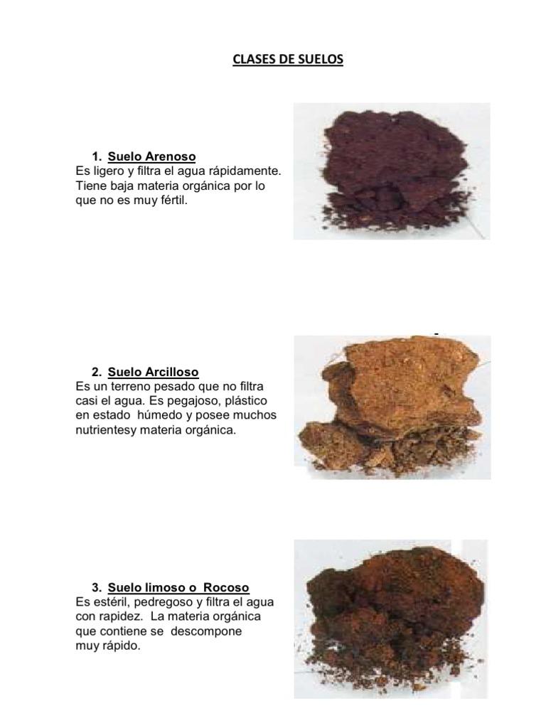 Clases de suelos for Suelo besar el suelo xd