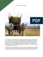 Uses of Farm Animals