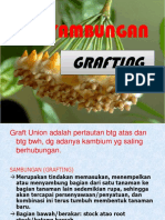 GRAFT-UNION-perbanyakan-tan-vivi.ppt