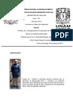 Reporte Práctica 1 VIROLOGÍA.docx