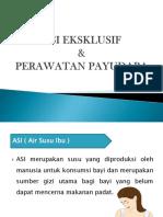Lembar Balik ASI Eksklusif & Perawatan Payudara