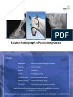 Equine Radiographic Positioning Guide