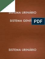 ENF_10 Sistema urogenital.pdf