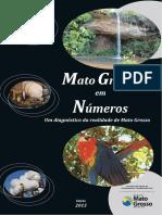Mato Grosso em números 2013