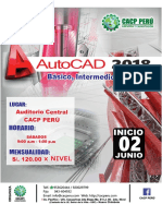 Especialista en Autocad 2018 - Cacp