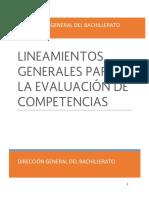 Lineamientos de evaluación por competencias