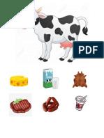 Vaca y Derivados
