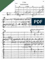 Gustav Mahler - 7° Sinfonía - 2° Movimiento