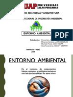 ENTORNO AMBIENTAL01